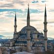 Blue Mosque, Istanbul, Turkey. — Stock Photo #17409347