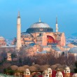 Hagia Sophia mosque, Istanbul, Turkey. — Stock Photo #20301099