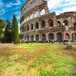 Majestic Coliseum, Rome, Italy. — Stock Photo #20302365