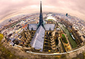 View of paris from Notre Dame, France — Stock Photo