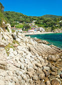 Beautiful coastlines in Elba island. — Stock Photo