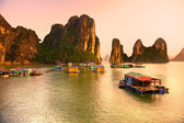 Halong Bay, Vietnam. Unesco World Heritage Site. — Stockfoto