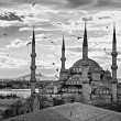 Blue Mosque, Istanbul, Turkey. — Stock Photo #24087365