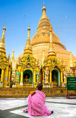Young Lady monk praying at the Shwedagon Paya, Yangoon, Myanmar. — Stock Photo