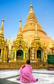Young Lady monk praying at the Shwedagon Paya, Yangoon, Myanmar. — Stock Photo