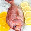 Seafood on ice at fish market — Stock Photo #26462029