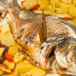 Fresh fish cooked with potatoes and tomatoes. — Stock Photo