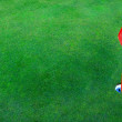 Golf Hole on Green Grass with Red Flag — Stock Photo #12779418
