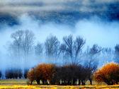 Mañana nublada — Foto de Stock