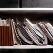 Files on Shelf — Stock Photo #13786324