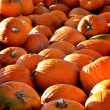 Pumpkin Pile — Stock Photo
