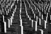 Arlingtonkyrkogården med gravstenar — Stockfoto