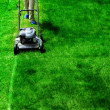 Mowing Lawn Grass - Stock Photo