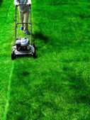 Mowing Lawn Grass — Foto Stock
