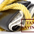 Stock Photo: Tax Savings of Cash