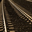 Railroad Tracks — Stock Photo #29001119