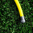 Hose on Green Grass — Stock Photo