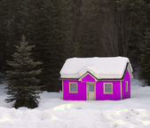 Pink House Buried in Snow — Stock Photo