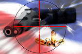 American Right to Bear Arms in Crosshairs — Stock Photo