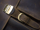 Metal Clasp on Leather Case — Stock Photo