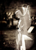 Angel Statue with Wings for Peace — Stok fotoğraf