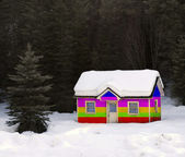 Rainbow House Buried in Snow — Stock Photo