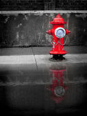 Red fire hydrant reflected in puddle of water — Stock Photo