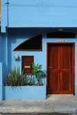Brown door — Stockfoto