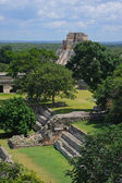 Mayan pyramid in Uxmal — Stock Photo