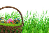 Colorful easter eggs on the grass — Stock Photo
