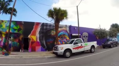 Wynwood Art Design Dstrict Miami Florida — Stock Video
