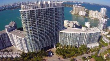 Flamingo Miami Beach — Stock Video