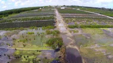 Homestead farmland aerial video — Stock Video