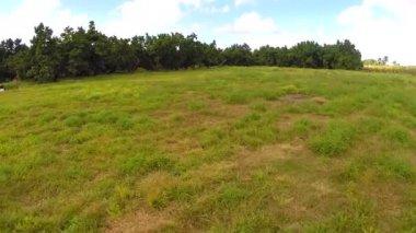 Flying over a field of grass — Vídeo de Stock