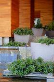 Zen Garden with waterfall — Stock Photo
