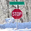 Winter Stop Sign - Stock Photo