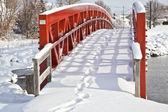 Winter Bridge — Stock Photo