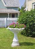 пьедестал сад сеялка — Стоковое фото