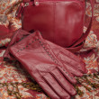 Red Leather Gloves and Purse — Stock Photo