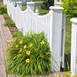Picket fence — Stock Photo #18739293