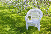 White Wicker — Stockfoto