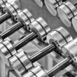 Royalty-Free Stock Photo: Dumbbells