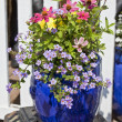 Blue Glazed Terracotta Planters - Stock Photo