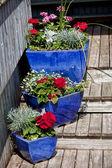 Blue Glazed Terracotta Planters — Stock Photo