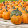 Pumpkin Wagon — Stock Photo