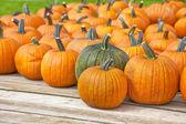 Pumpkin Wagon — Stock Photo