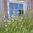 Old Barn Window — Stock Photo