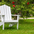 Adirondack Chair — Stock Photo #26313553