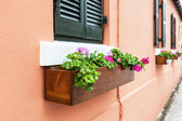 Bermuda Flower Boxes — Stock Photo