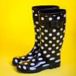 Polka Dot Rubber Boots — Stock Photo